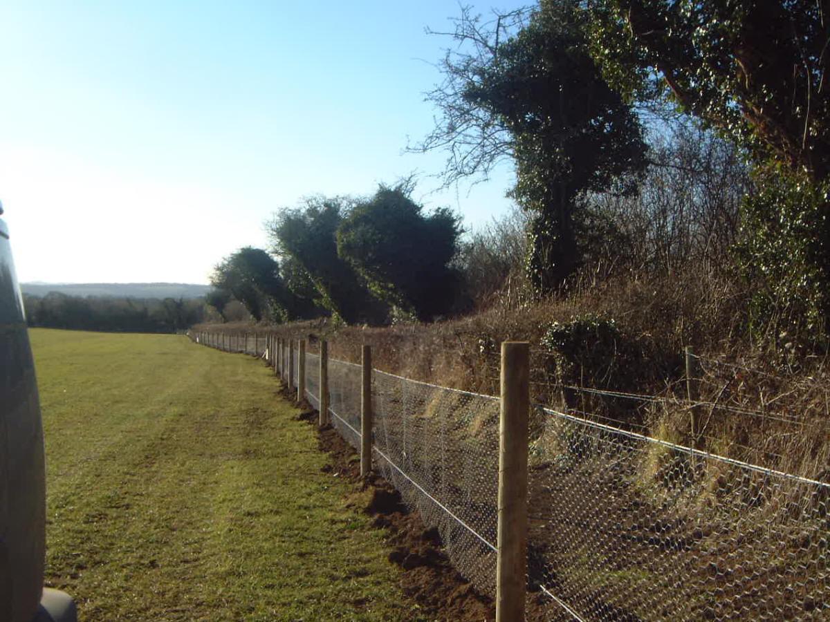 Rabbit Fencing – Kiwi Fencing Ltd