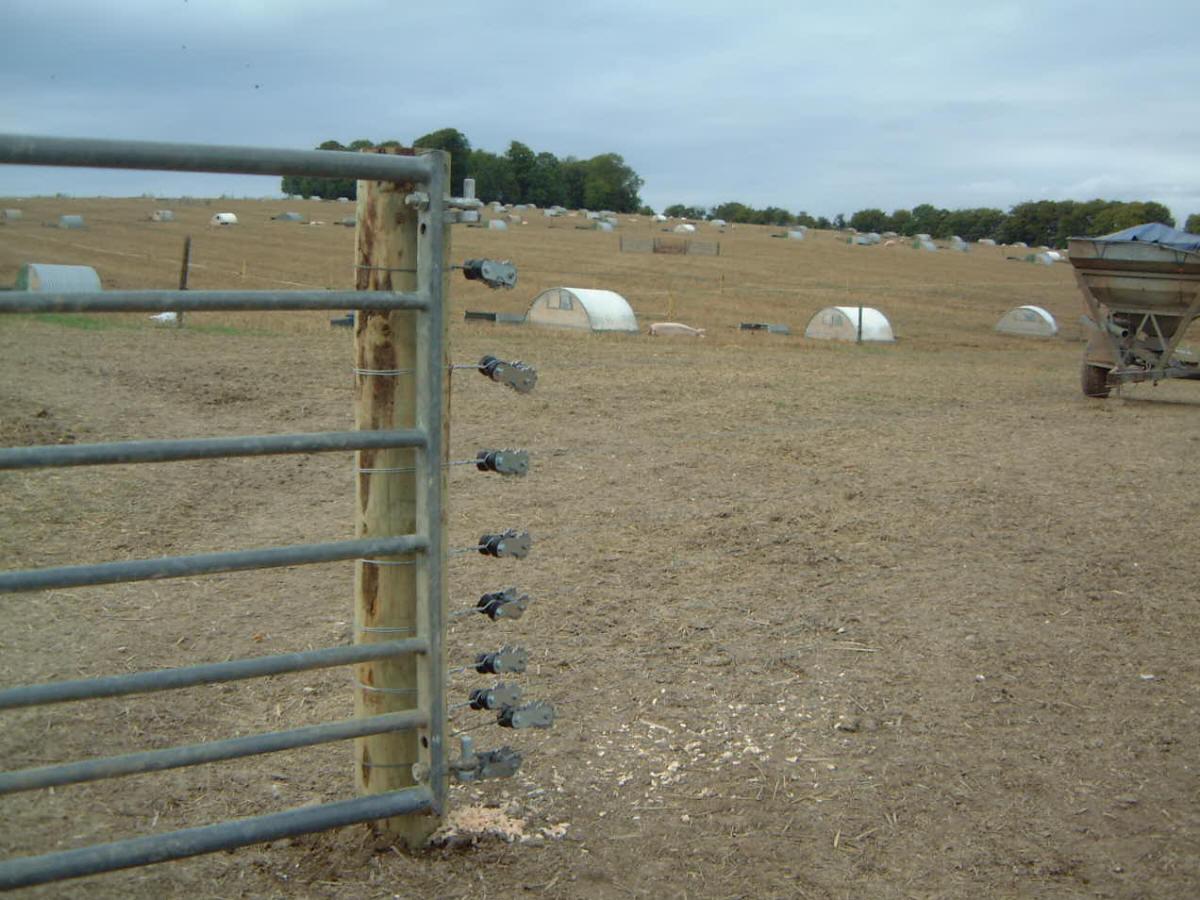 fox fence1